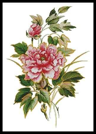 click here to view larger image of Antique Rose (chart)