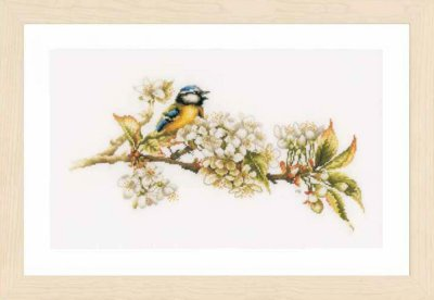 click here to view larger image of Blue Tit (Aida) (counted cross stitch kit)