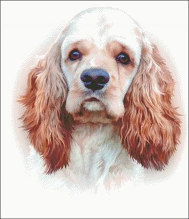 click here to view larger image of American Cocker Spaniel (chart)