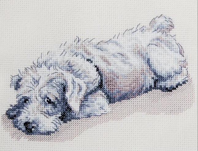 click here to view larger image of Murphy (counted cross stitch kit)