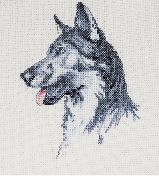 click here to view larger image of Fred (counted cross stitch kit)