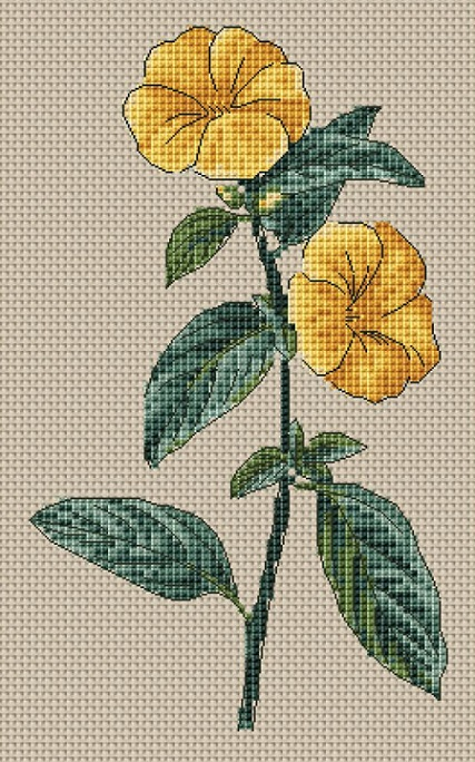click here to view larger image of Linum Trigynum (French Flax) (counted cross stitch kit)