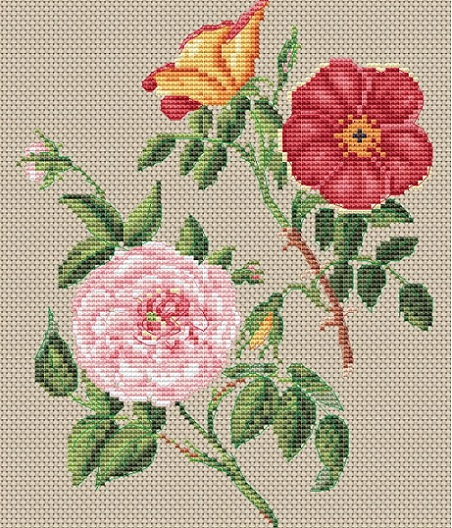 click here to view larger image of Copper & Virgin Rose (counted cross stitch kit)