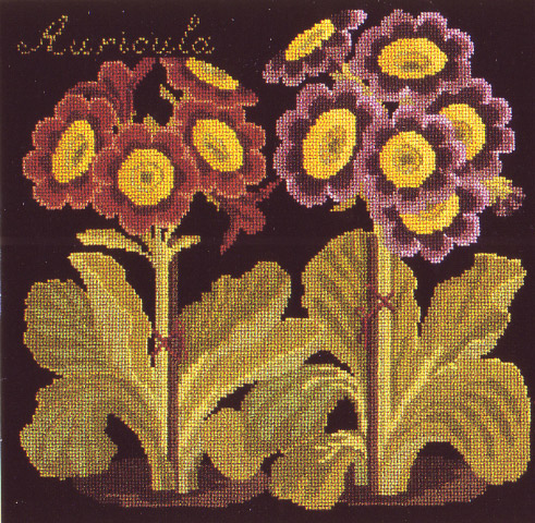 click here to view larger image of Botanical Garden - Auricula (needlepoint)