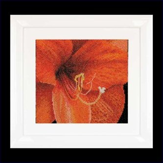 click here to view larger image of Amaryllis (counted cross stitch kit)